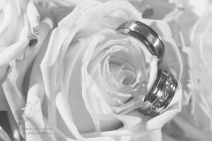 Standesamtliche Hochzeit Gütersloh - Emine & Murat - mexi-photos