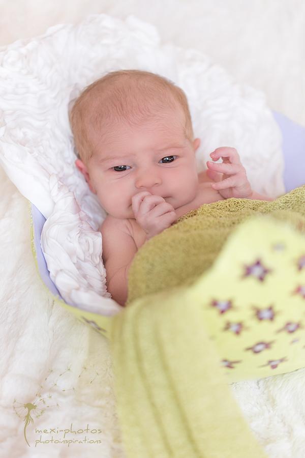 Babybauchschale mit Neugeborenen - Fotografie Gütersloh